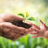 Nachhaltigkeit liegt uns am Herzen: Nachhaltige Behälter aus Kunststoff Nachhaltigkeit bei ORBIS Europe